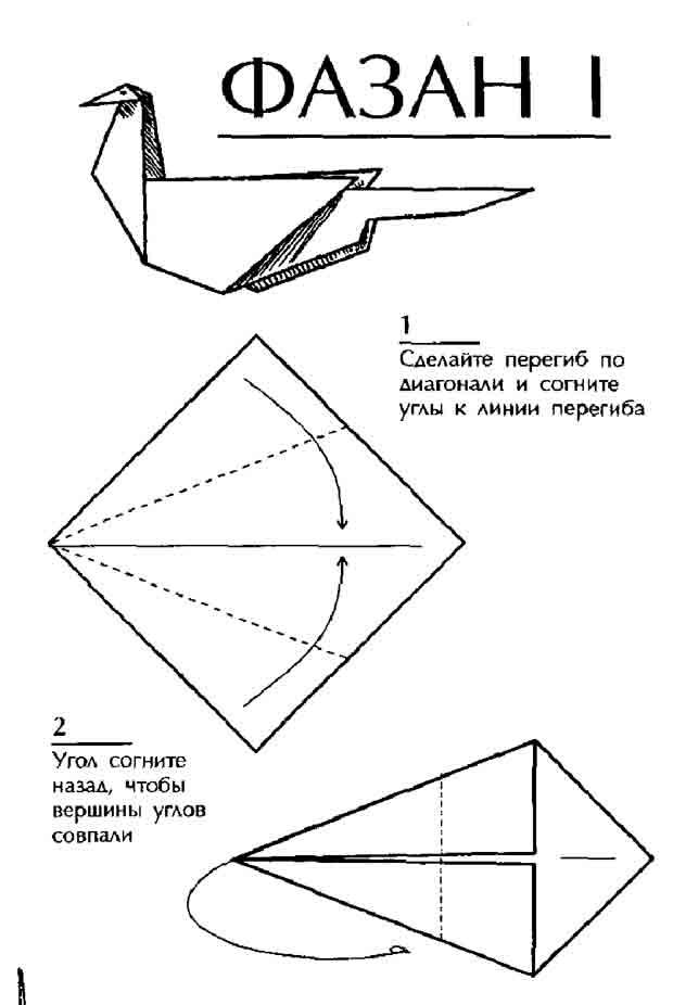 Схема оригами Фазан