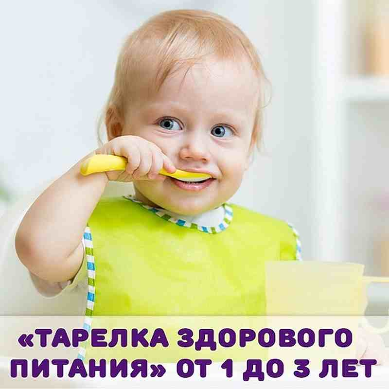 Тарелка здорового питания от 1 до 3 лет